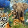 Świat zwierząt