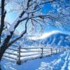 Pory roku Zima